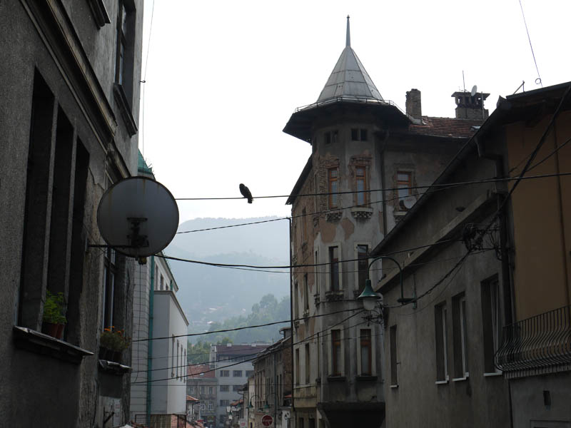 Hawk hangs tough in Sarajevo.
